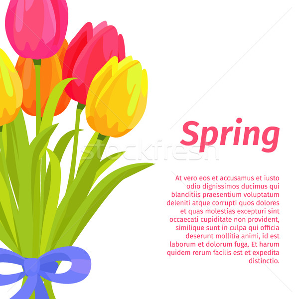 Spring Postcard with Congratulations Illustration Stock photo © robuart