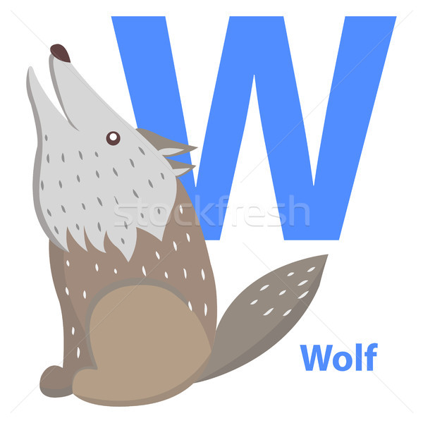 Blue Letter W Sitting and Howling Wolf ABC Cards Stock photo © robuart