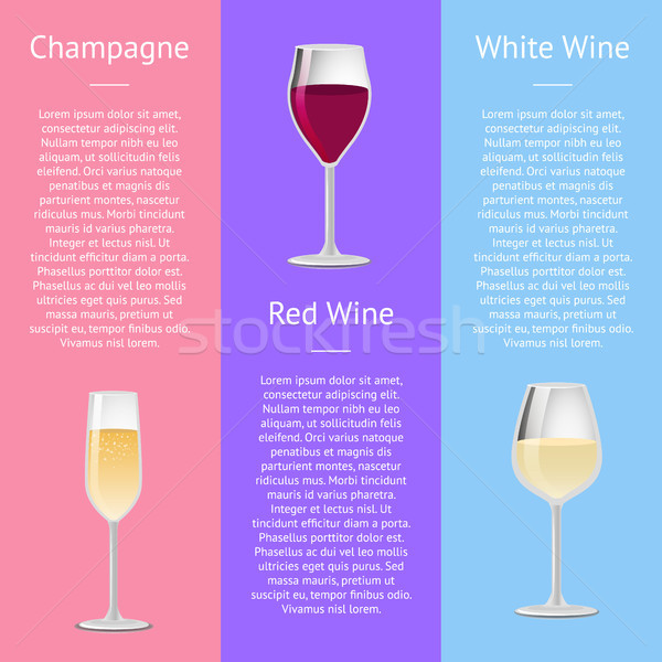 Champagne, Red and White Wine Vector Illustration Stock photo © robuart