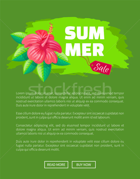 Summer Sale Emblem Exotic Pink Flower Brush Stroke Stock photo © robuart