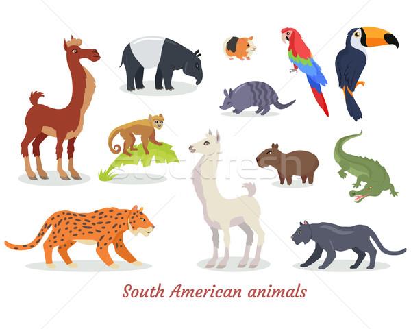 South American Animals Cartoon Vectors Set Stock photo © robuart