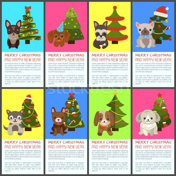 Merry Christmas and Happy New Year Pets and Spruce Stock photo © robuart