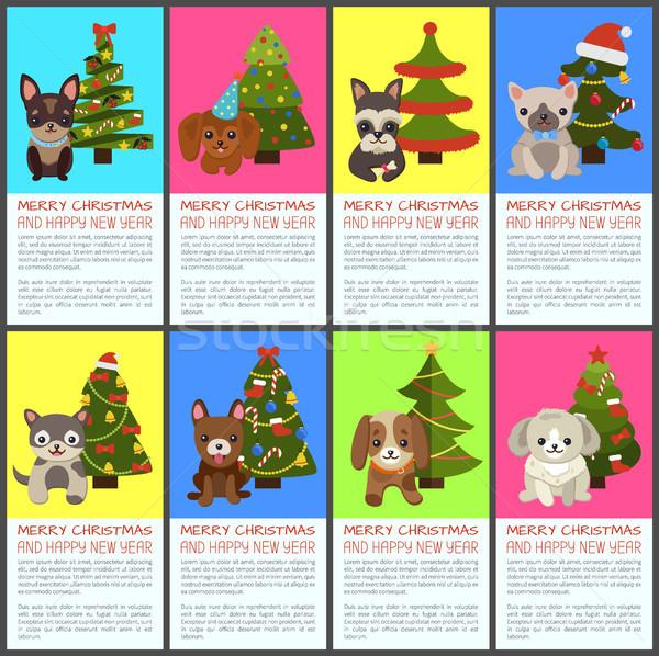 Alegre natal feliz ano novo animais de estimação enfeitar conjunto Foto stock © robuart