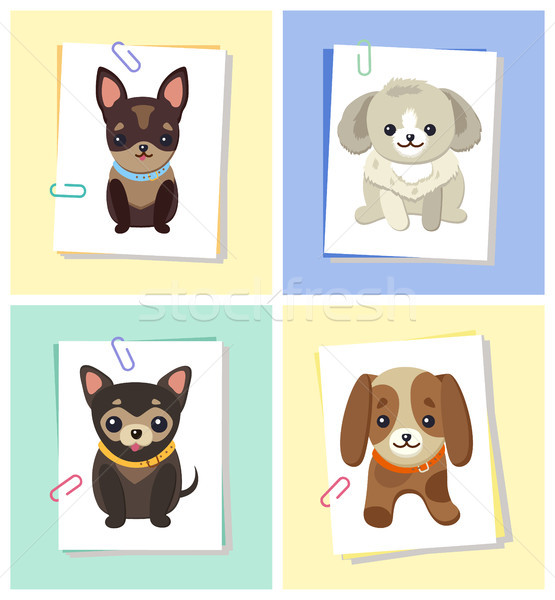 Puppies and Dogs Poster Set Vector Illustration Stock photo © robuart