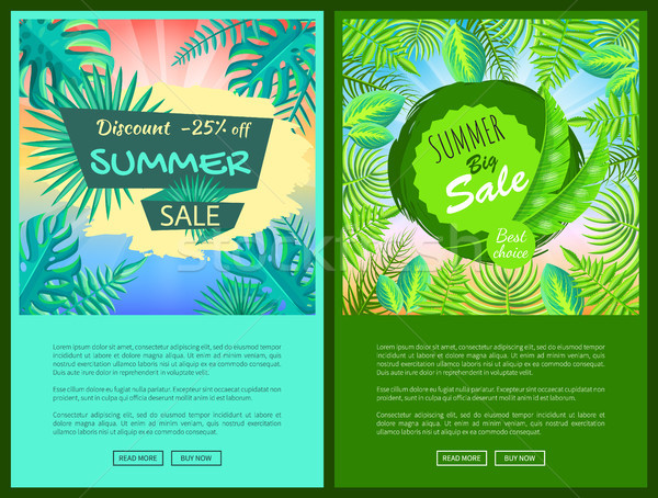 Discount Summer Sale Web Posters Set Percent Off Stock photo © robuart