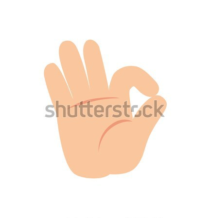 Ok Nonverbal Gesture Sign Vector Human Palm Icon Stock photo © robuart