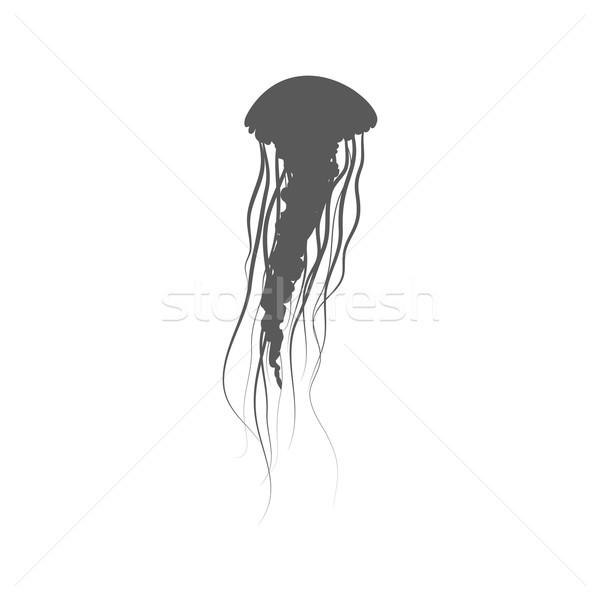 Monocromático água-viva flutuante espaço longo isolado Foto stock © robuart