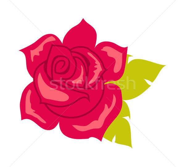 rosa vermelha folha verde flor desenho animado estilo