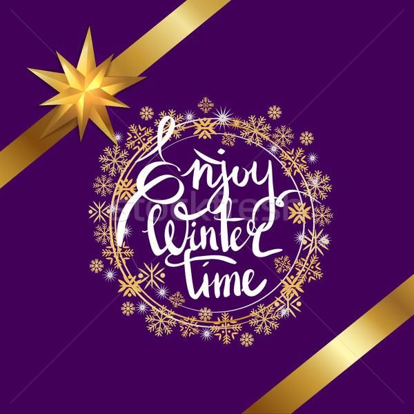 Enjoy Winter Time Snowflakes Vector Illustration Stock photo © robuart