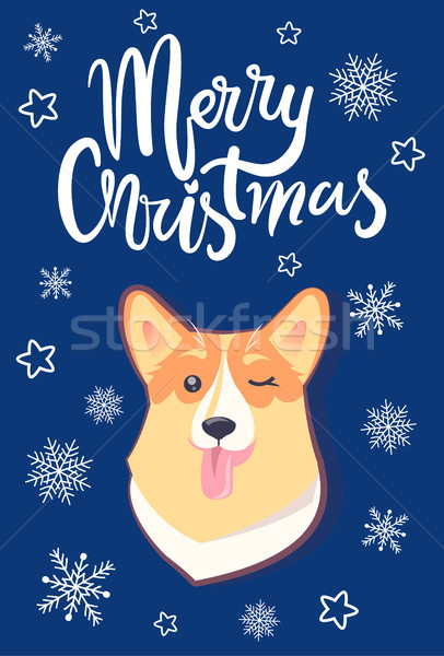 Alegre natal cãozinho cara cartão engraçado Foto stock © robuart