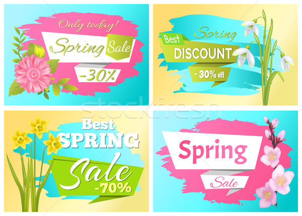 Set Spring Sale Advertisement Label Branch Flowers Stock photo © robuart