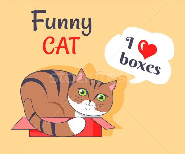 Funny Cat I Love Boxes Poster Vector Illustration Stock photo © robuart