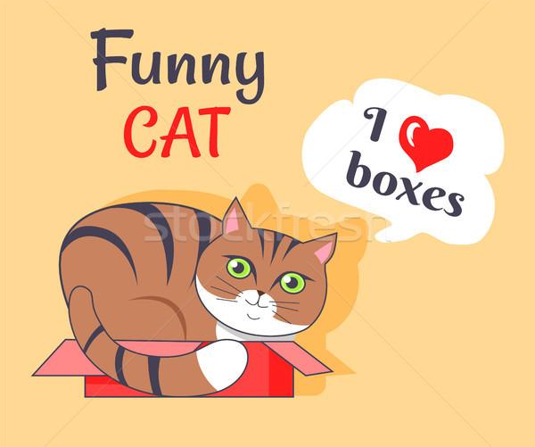 смешные кошки любви коробки плакат Китти Сток-фото © robuart