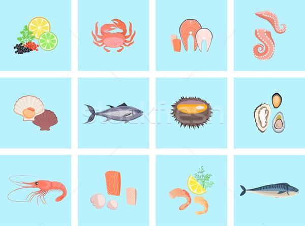 морепродуктов набор дизайна рыбы краба омаров Сток-фото © robuart