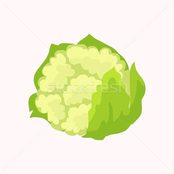 Karfiol izolált fehér vektor zöldségek friss Stock fotó © robuart