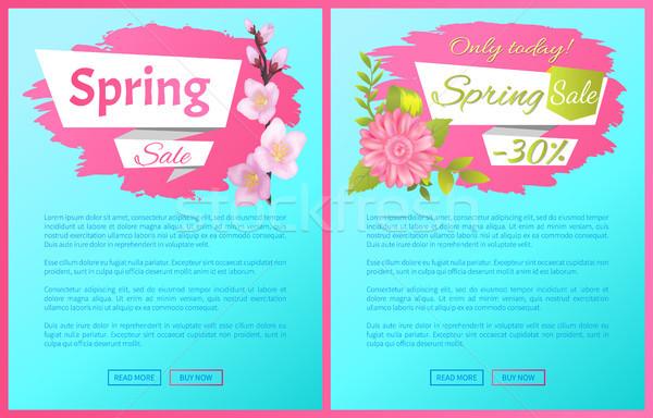 Voorjaar verkoop advertentie tak sakura Stockfoto © robuart