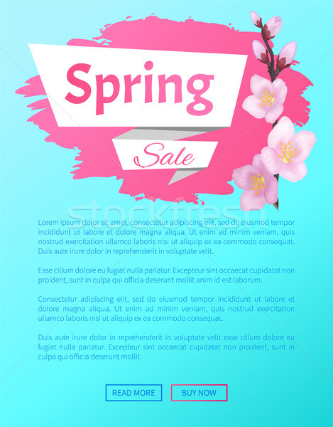Spring Sale Advertisement Label Branch of Sakura Stock photo © robuart