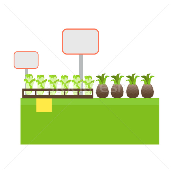 Shelf with Products in Grocery Store Vector. Stock photo © robuart