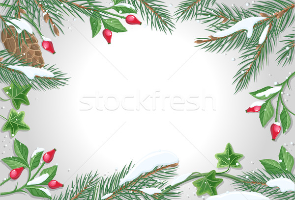 Vector Frame with Pine Tree, Sweetbrier Brunches  Stock photo © robuart