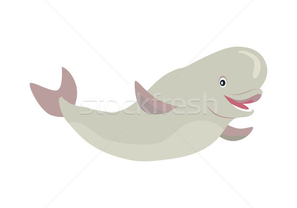 Beluga Whale Cartoon Flat Vector Illustration Stock photo © robuart