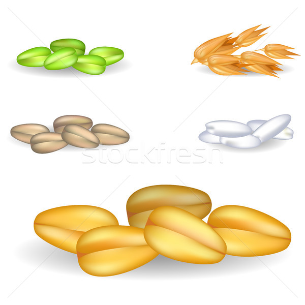 Wheat Grain Pile with Small Heaps on Background Stock photo © robuart