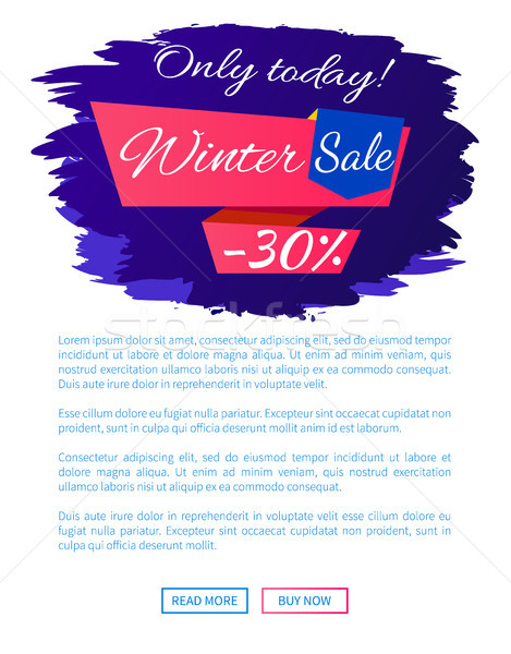 Only Today Winter Sale - 30 Off Promo Web Poster Stock photo © robuart