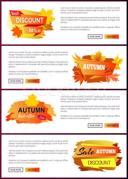 Zestaw jesienią duży sprzedaży najlepszy Zdjęcia stock © robuart