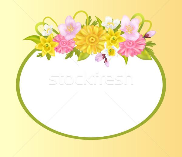 Narcisos sakura flores photo frame cartão projeto Foto stock © robuart