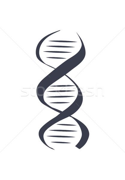 Dna genético informações instruções Foto stock © robuart