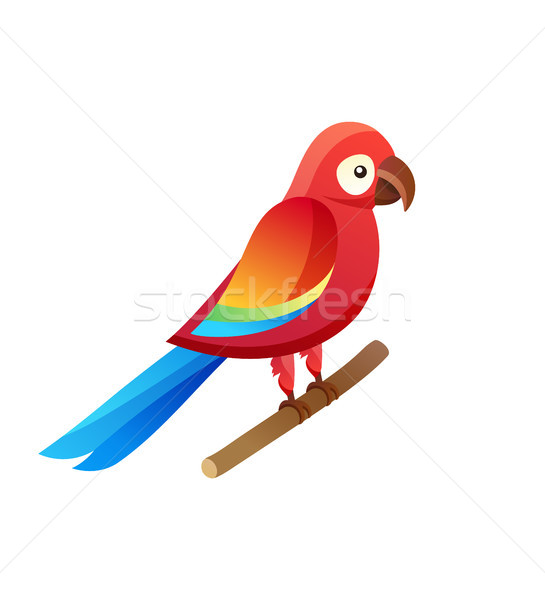 Parrot at Pet Shop Sitting Vector Illustration Stock photo © robuart