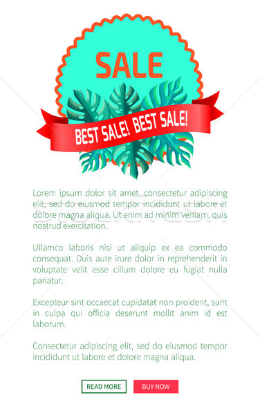 Best Sale Promotional Emblem with Palm Leaves Stock photo © robuart