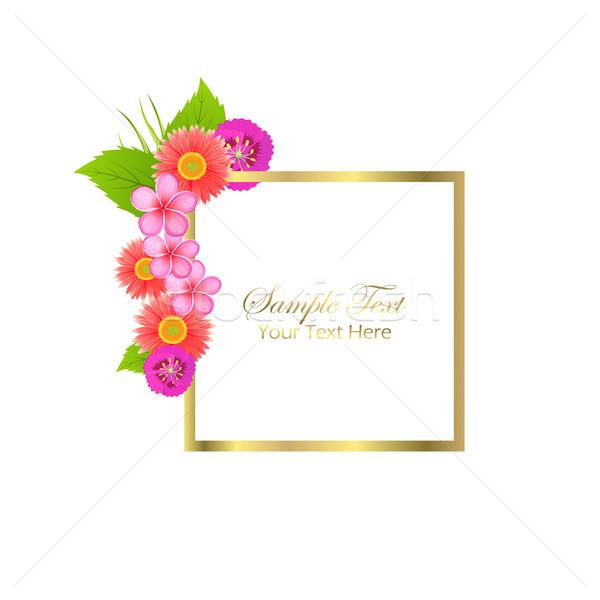 Cute congratulazione cartolina fiori di primavera campione testo Foto d'archivio © robuart