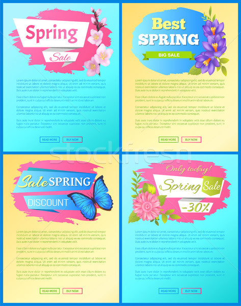 Color Spring Sale Posters Set Discount Butterflies Stock photo © robuart