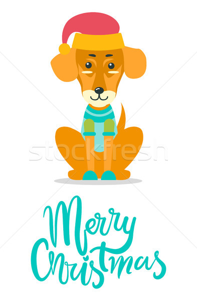 веселый Рождества собака трикотажный свитер Сток-фото © robuart