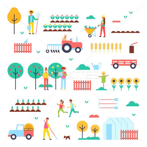 Stockfoto: Boerderij · werknemers · speciaal · groene · planten