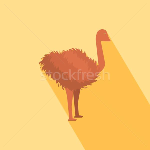 Ostrich icon Stock photo © robuart