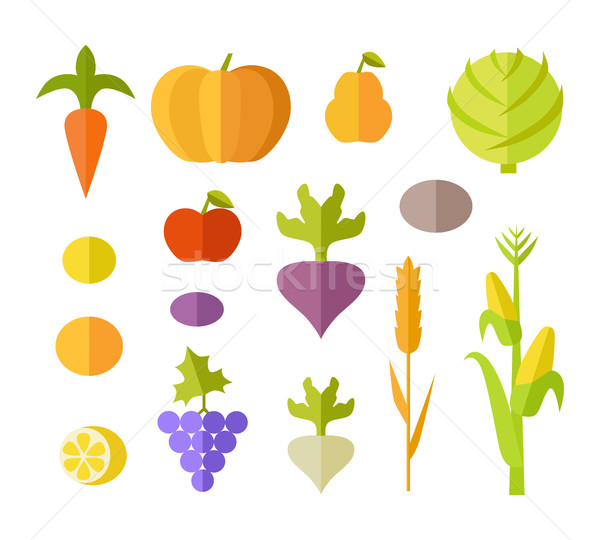 Set of Fruits & Vegetables Vector Illustration.   Stock photo © robuart