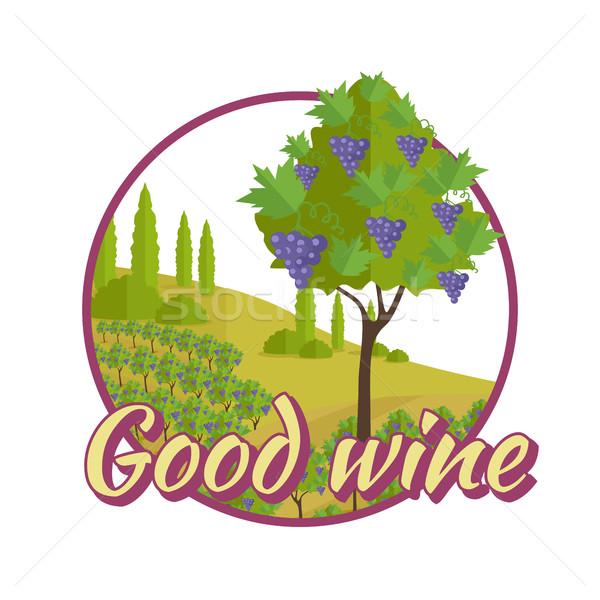 Bene vino poster vinificazione logo etichette Foto d'archivio © robuart