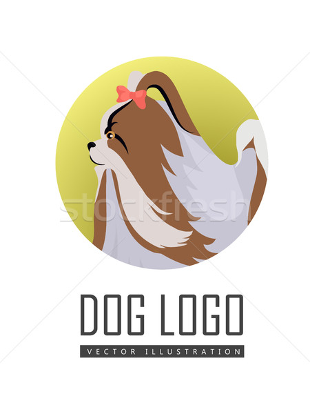 Dog Logo Vector of Pekingese Isolated on White Stock photo © robuart