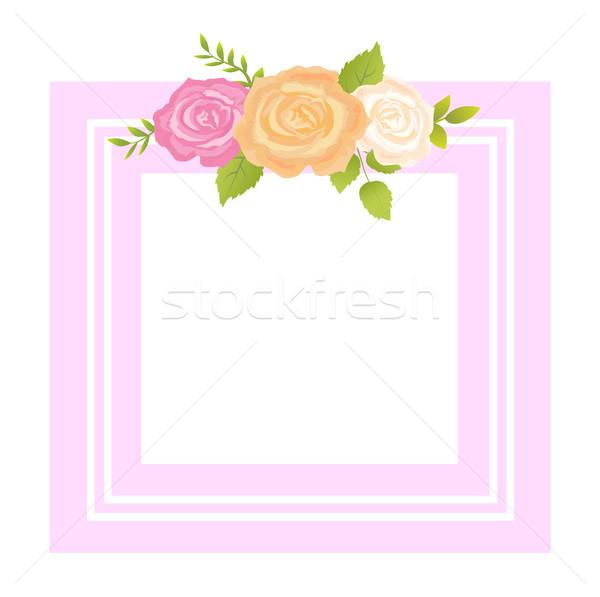 Aumentó rosa naranja beige flor Foto stock © robuart