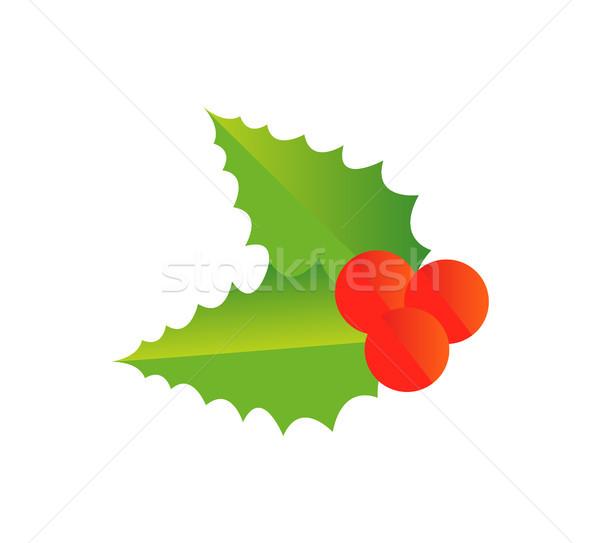 Holly Berry Christmas Symbol Vector Illustration Stock photo © robuart