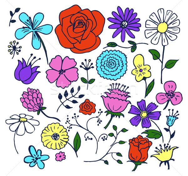 Сток-фото: цветы · рисованной · Элементы · роз · процветающий
