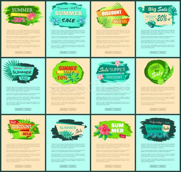 Summertime sprzedaży plakaty promo internetowych Internetu Zdjęcia stock © robuart