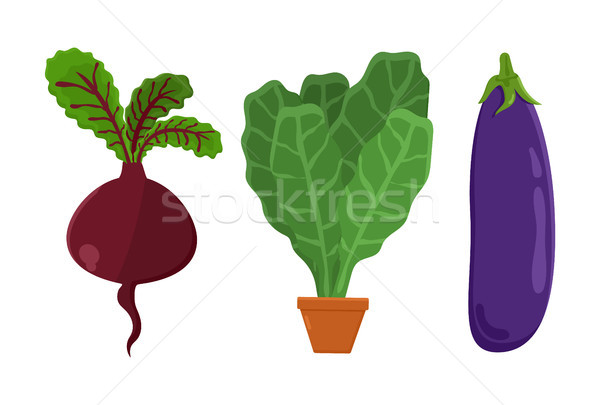 Nourriture végétarienne betterave légumes aubergine pot Photo stock © robuart
