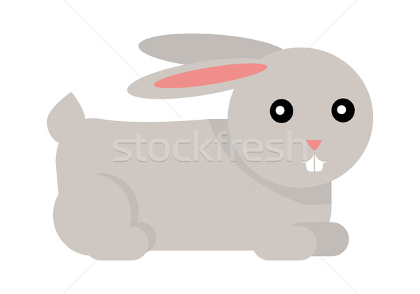 Rabbit Cartoon Isolated on White. Vector Stock photo © robuart