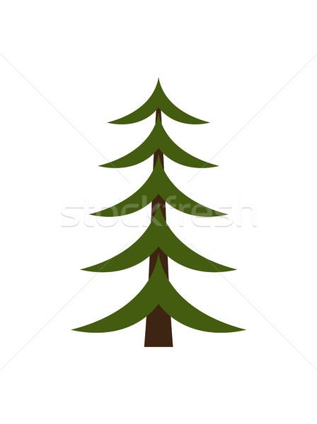 Image of Christmas Tree on Vector Illustration Stock photo © robuart