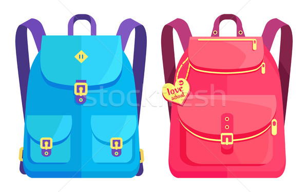 Rucksacks Unisex in Blue and Pink with Pockets Stock photo © robuart