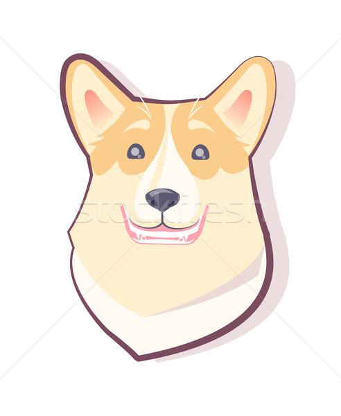 Stockfoto: Hond · emoticon · glimlachend · puppy · tonen · tanden
