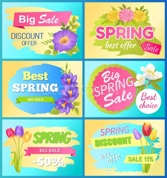 Sezonowy oferta wiosną sprzedaży reklama kwiaty Zdjęcia stock © robuart