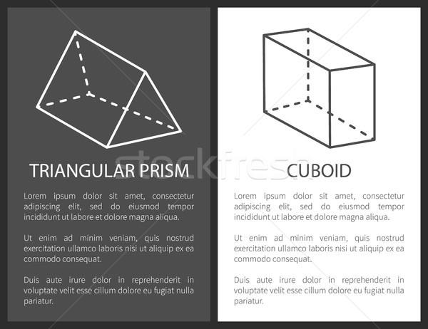 Prizma geometrik basit hatları vektör Stok fotoğraf © robuart